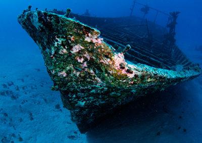 Epave à Tahiti, plongée Topdive