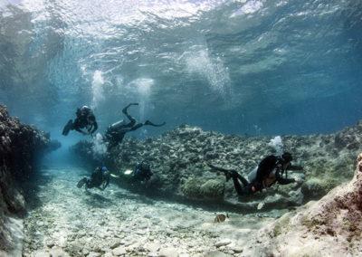 Tetiaroa - Plongeurs - Topdive - Photo T-Kotouc