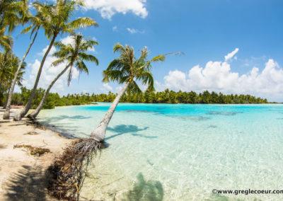 Le lagon bleu de Rangiroa - Topdive Rangiroa ©Greglecoeur