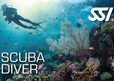 Formation Topdive Scuba Diver SSI